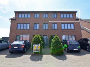 Appartement à louer                     à 3660 Opglabbeek