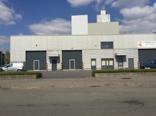 Magasin de +/-153 m² en forme de L situé dans la zone des PME à Deurne.