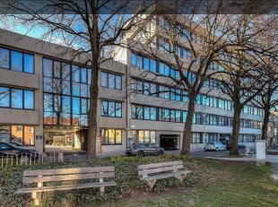 Het Groeninghe-complex ligt in een groene en rustige omgeving op een terreinoppervlakte van 1ha 10 a aan de rand van de stad Gent (omgeving UZ).Het ka
