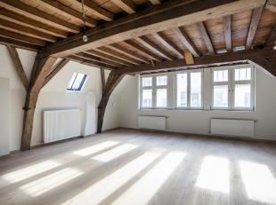 Charme appartement in de historische stadskern van Antwerpen.<br /> Dit duplex appartement met mezzanine is onderdeel van een totaalrenovatieproject a