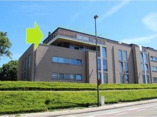Dit prachtig dakappartement is gelegen in een recent gebouw aan het einde van de Driekruisenstraat, met achterzijde aan de Bilzersteenweg, op wandelaf