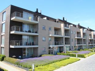 Dit modern appartement is gelegen op de eerste verdieping van een recent gebouw aan het einde van de Driekruisenstraat, met achterzijde aan de Bilzers