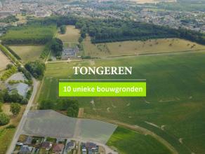 Terrain à vendre                     à 3700 Tongeren