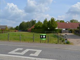 Terrain à vendre                     à 3910 Sint-Huibrechts-Lille