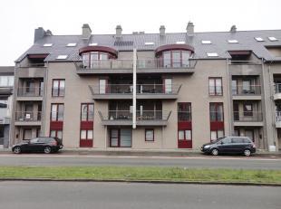 Appartement met 2 slaapkamers gelegen op de 1e  verdieping te 3900 Overpelt. Indeling: inkomhal, woonkamer met grote ramen die uitkijken op het z&eacu