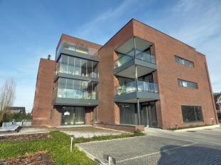 Gelijkvloers nieuwbouwappartement (106m²) met terras, twee slaapkamers, lift naar kelderberging en parking bovengrondsIndeling: gemeenschappelijk