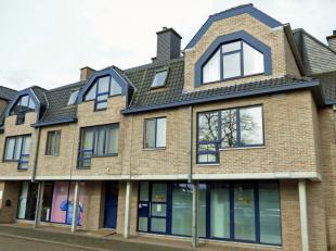 Ruime winkel/kantoorruimte/praktijk of gelijkvloers appartement (165m²) met drie slaapkamers, terras/tuintje, grote kelder en garage in het centr