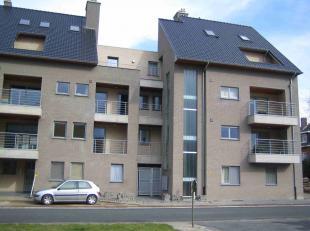 Appartement à louer                     à 3900 Overpelt