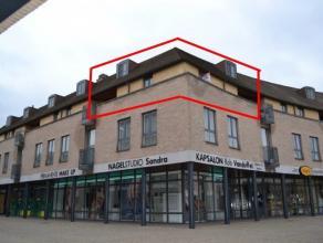 Gelegen op de tweede verdieping boven de winkelgalerij nabij het cultureel centrum gezellig duplex appartement met veel lichtinval. Vanuit de entreeha