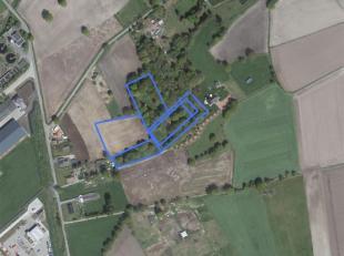 In 't Hasselt, in een landelijke omgeving, nabij het industrieterrein Kanaal-Noord gelegen landbouw/bosgrond van 01 ha 80a 90ca.