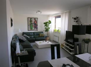 Instapklaar appartement, gelegen op de 2de verdieping op een toplocatie, pal in het centrum van Genk. Het appartement kent volgende indeling: De inkom