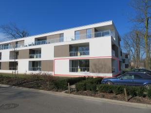 RESIDENTIE KASTEELDREEF is gelegen op wandelafstand van het centrum van Bree,  en bestaat uit 40 assistentiewoningen die staan voor KWALITEIT, maximaa