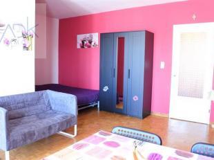 ADK IMMO vous propose ce charmant studio à la location! Il se compose d'un vaste séjour, d'une cuisine, d'une salle de bains, d'un hall