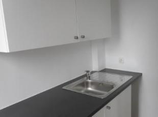Studio entièrement remis à neuf situé au 4ème étage composé d'un séjour, une cuisine meublée,