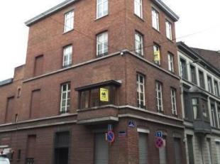 Bel appartement dans une maison de Maître situé dans le centre ville et à proximité du Jardin Botanique. Il se compose d'un