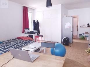 Liège : Situé à proximité des accès dautoroutes, des commerces et de lécole des Barboux. Charmant Studio sit