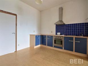 LIEGE: Barbou - Rez de chaussée Living, Cuisine meublée, 1 Chambre, SDD (D-SL-WC). Commodités: Convecteur Gaz, DV, caution 2 mois