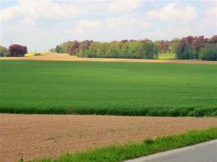 5 très beaux ensembles de terres de cultures et prairies d'une contenance totale de 26 ha 41 A 06 ca, majoritairement libres d'occupation.<br /
