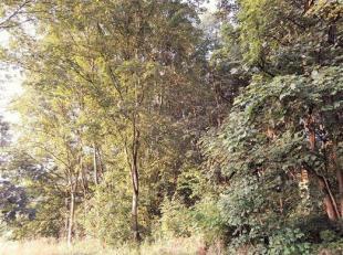 Beau bois d'une contenance de 2 ha 10 a 03 ca facilement accessible.<br /> Il est composé d'une futaie feuillue à base de frênes e