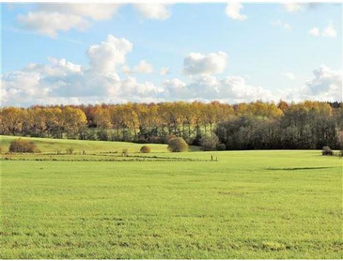 Terrain agricole à vendre à Sinsin, € 92.000