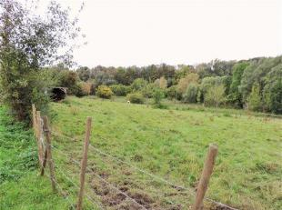 Belle prairie libre d'occupation d'une contenance de 1 ha 29 a 04 ca.<br /> Elle est facilement accessible. Zone agricole au plan de secteur ( non con