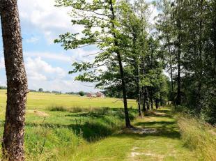 Tout au bout d'un chemin sans issue, dans la botte du Hainaut, propriété d'un seul tenant de 21 ha 82 a, faisant partie de l'Ardenne cen
