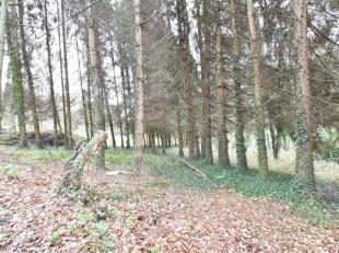 Idéalement située dans un cadre calme et verdoyant, belle parcelle de terrain de 1635m² bordée par le ruisseau du fond d'Oxh
