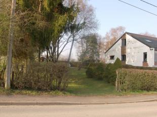 Terrain à Bâtir à Welkenraedt rue des Wallons : 941m², surface potentiellement bâtie 10m de façade X 13m de prof
