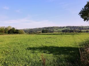Grises Pierres, dans le quartier au lieu dit Groumette : grande prairie relativement plane et dun seul tenant de ± 2,5ha située non loin