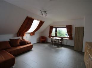 Chouette studio rénové à louer, Cosenbergerheydt 20-10 (1° étage) de l'immeuble avec 1 parking et une cave commune.Le