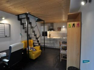 NAMUR (centre) rue de Bruxelles 104  Studio meublé idéalement situé dans le coeur de la ville dans une résidence de standi