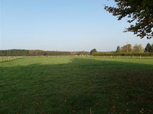 Maisons & Chalets d'Ardennes vous propose ce terrain de 13a74 en zone habitable dans le petit village très calme de Gènes à R