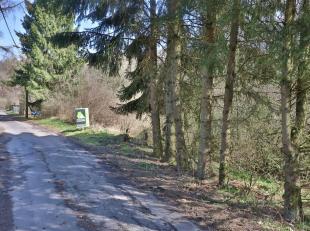 Nous vous proposons ce terrain à bâtir boisé de 1890 m² situé dans un quartier calme de la commune de Somme-Leuze. Lar