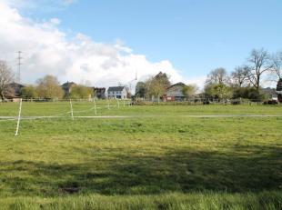 Situé à Senonchamps, commune de Bastogne, terrain de 11a 57 ca. Belle situation, vue dégagée à l'arrièreTerr