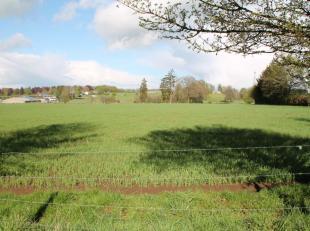Situé à Senonchamps, commune de Bastogne, terrain de 10 ares 75 centiares. Belle situation, vue dégagée. Terrain plat. Pos