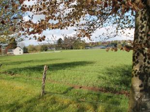 Situé à Senonchamps, commune de Bastogne, terrain de 9a 75ca. Belle situation, vue dégagée. Terrain plat. Possibilit&eacut