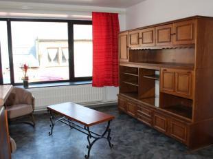Gemeubeld appartement met ingerichte keuken - badkamer - woonkamer - 1 slaapkamer