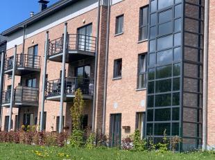 Très bel appartement avec terrasse  situé à deux pas du centre ville et du Ravel. Duplex, il se compose, sur 160 m² net,: au