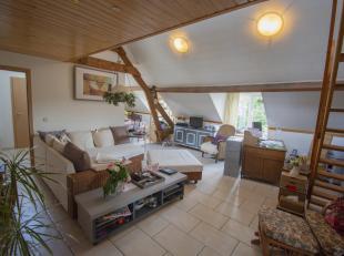 Très bien situé à 10 minutes de Libramont et ses facilités, voici au dernier étage, un bel et grand appartement 3 c