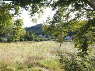Dans le petit village de Juzaine, sur la commune de Durbuy, retrouvez ces deux magnifiques parcelles de terrain à bâtir idéalement