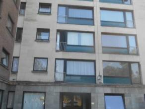 Bel appartement au rez de chaussée : living, wc, cuisine équipée, salle de bain-douche, 1 chambre. parking aisé. Loyer 480