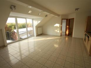 Appartement duplex : hall, grand living avec balcon, cuisine équipée, sdb, wc, 2 chambres. Etage : 2 chambres et séjour. CC gaz.