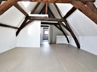 Impeccable appartement 1 chambre intra-muros<br /> Composition: Beau living lumineux avec poutres apparentes et petite mezzanine, living comprenant sa