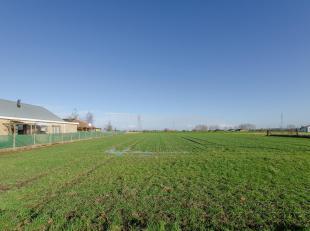 ESTAIMPUIS<br /> A l'entrée du village, ce terrain à bâtir d'une superficie de 1.980 m² permet la construction d'une habitati