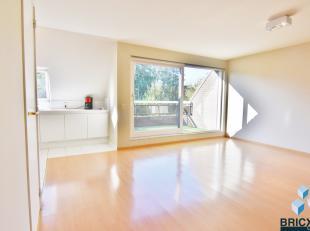 Luchtig duplex met lift in een groene oase. <br /> Dit appartement omvat een inkomhal,gastentoilet, ruime woonkamer aansluitend met terras ( zw gerich