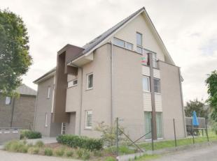 Appartement à louer                     à 8340 Sijsele