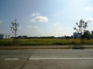 Perceel industriegrond (9.161m²) voor milieubelastende industrieën op commerciële zichtlocatie langs de Pathoekeweg.<br /> <br /> Stede