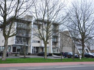 Gezellig appartement (3°V.) met 2 slaapkamers en terras, gelegen vlakbij Sint-Pietersplas.<br /> <br /> INDELING:<br /> 3°V.: Inkomhal met gas