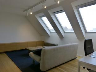Dit knus en gezellig appartement situeert slecht op 5 min wandelen van het historisch centrum van Gent. Recent werd ook een volledig nieuwe keuken voo