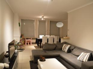 Vernieuwd gelijkvloers appartement op wandelafstand van de Grote Markt van Ieper. Geen syndickosten! Volledig geschilderd en instapklaar. De indeling